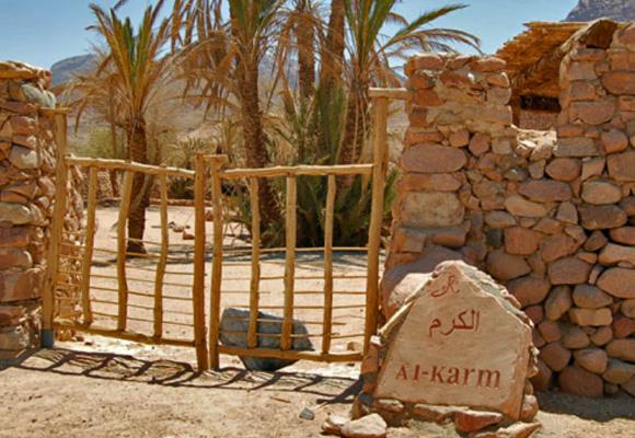 2008-Wasser-Workshop-im-Sinai-580