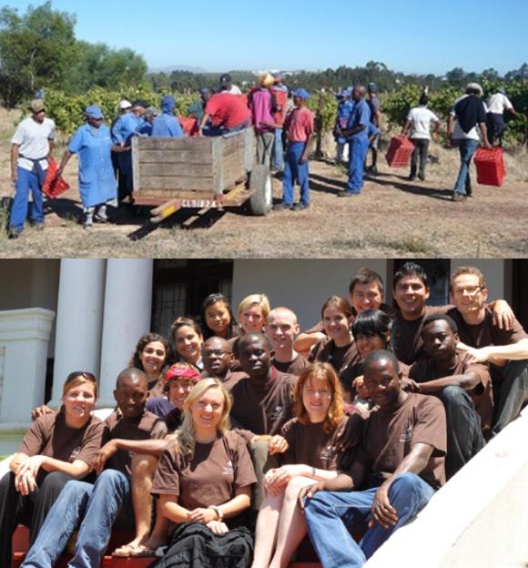 2009-Nachhaltige-Lebensmittelkette-2
